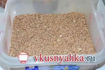 Пшеничный самогон без дрожжей, приготовление, шаг 1