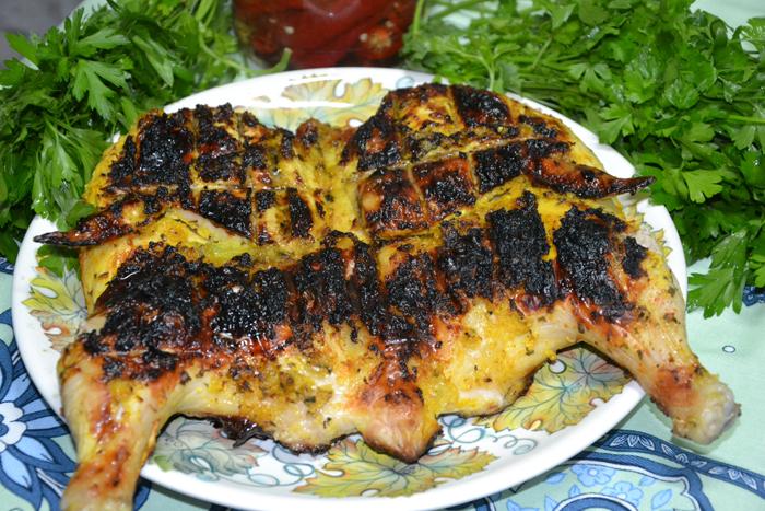 Цыпленок табака на костре на углях